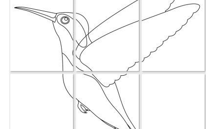 Kolorowanki XXL: Dzień ptaków
