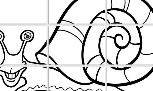 Kolorowanki XXL: Ślimaki